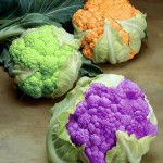 Cauliflower in secondary colors